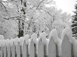 Winter Wood Fence